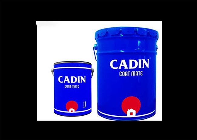 Sơn lót epoxy CADIN